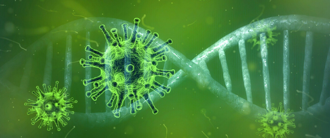 Coronavirus : Suspension provisoire des ateliers